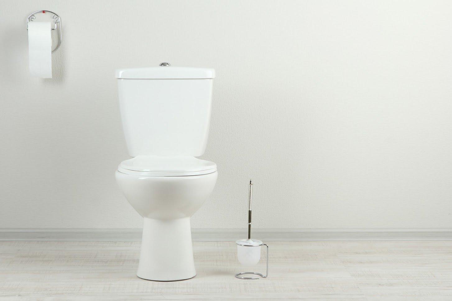 thornleigh plumber dual flush toilet